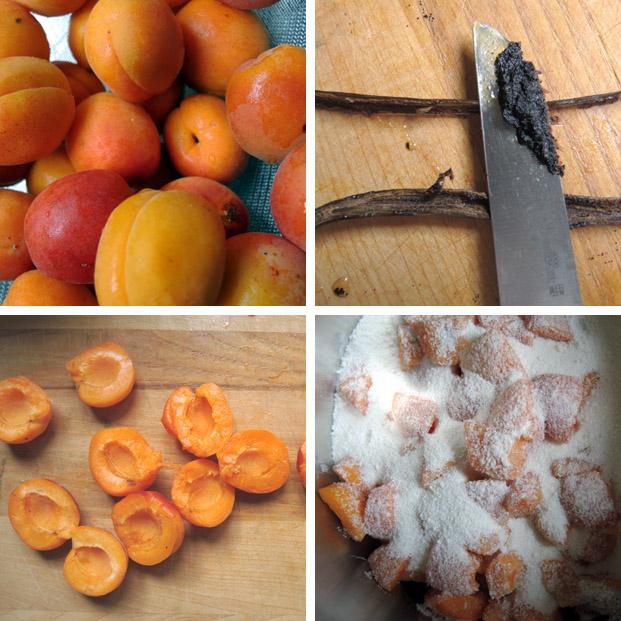 aprikosenmarmelade1