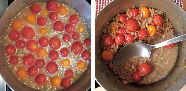 tomaten_farrotto_3