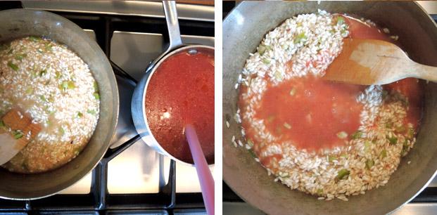 tomaten_risotto3