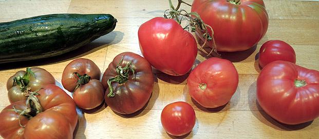 griechischer_salat1