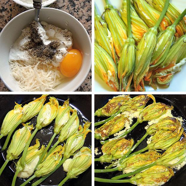 zucchiniblueten5