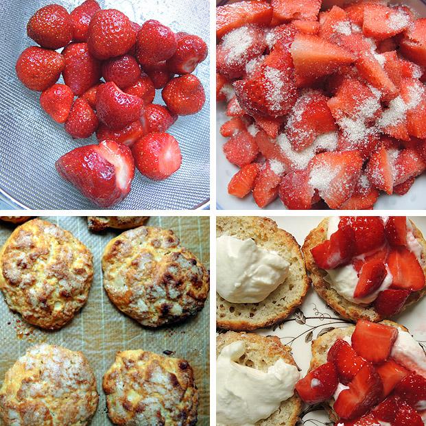 erdbeer_shortcakes2